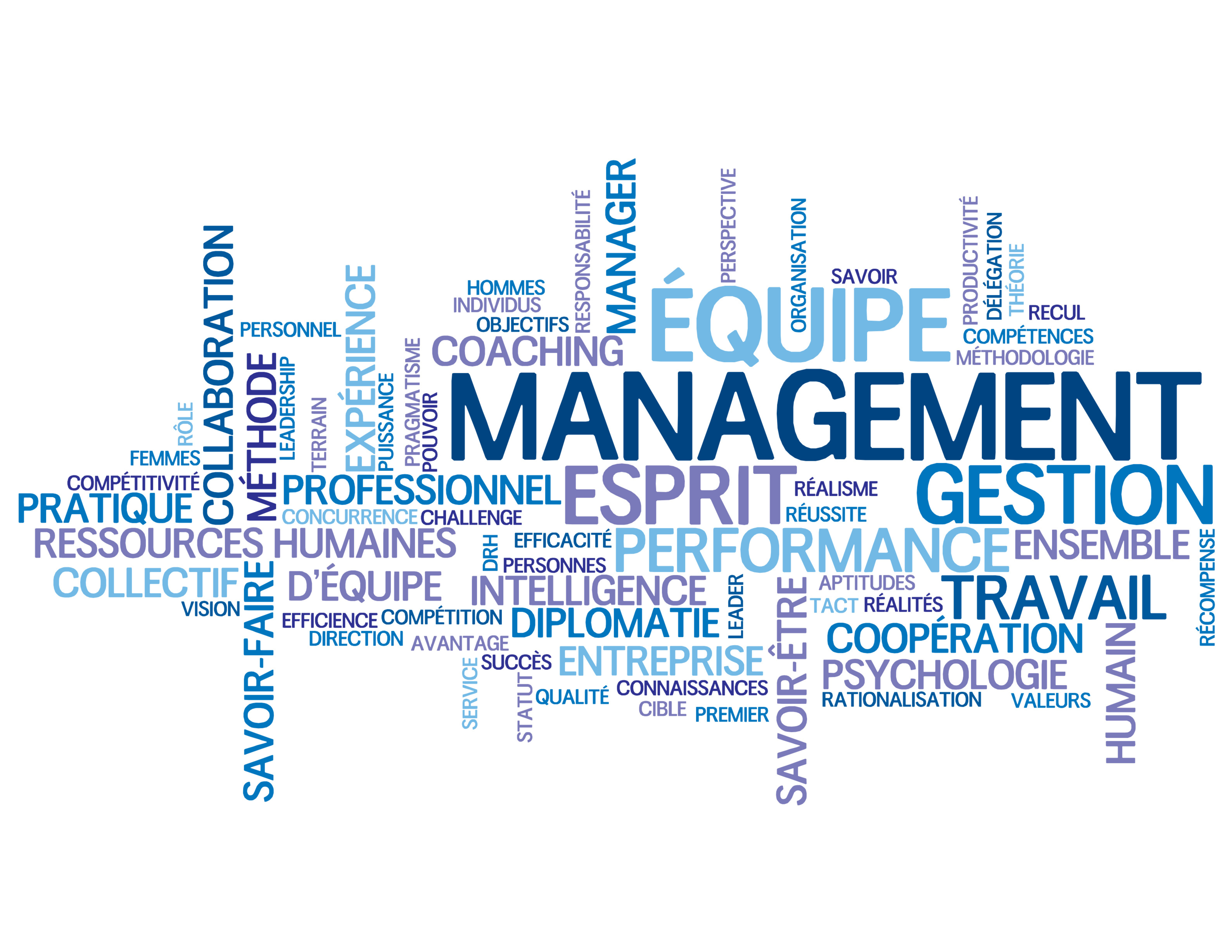 Management Report Esprit